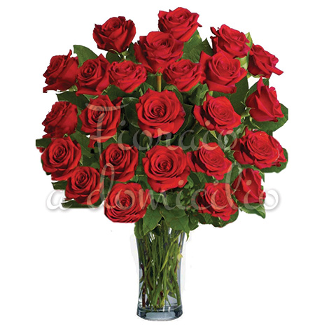 24-rose-rosse