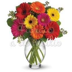 bouquet-di-gerbere-colorate