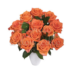 12_rose_arancio
