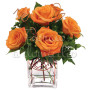 5_rose_arancio