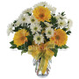 bouquet_di_gerbere_margherite