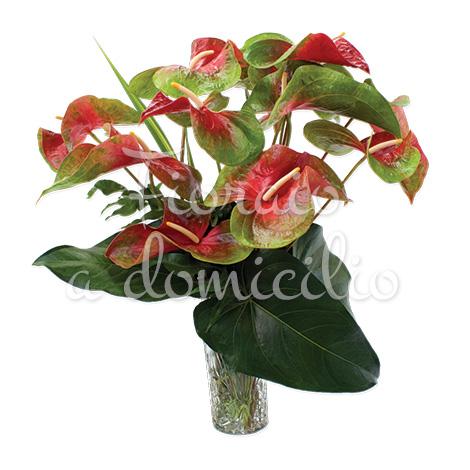bouquet-di-anthurium