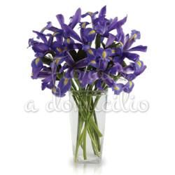 bouquet_iris_blu